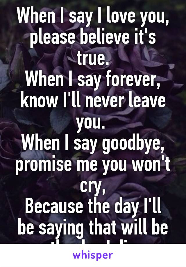 When I say I love you, please believe it's true. When I say forever, know I'll never leave you.  When I say goodbye, promise me you won't cry, Because the day I'll be saying that will be the day I die