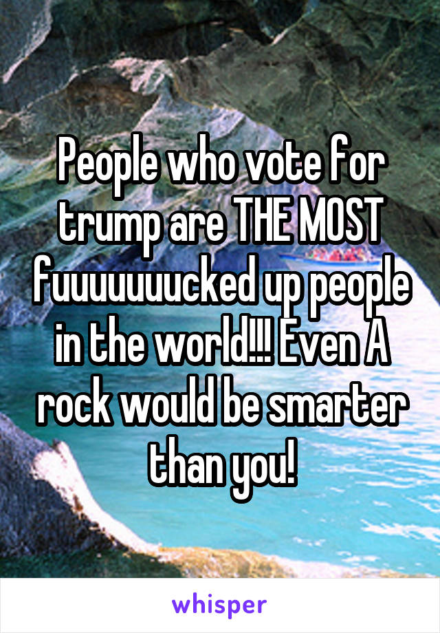 People who vote for trump are THE MOST fuuuuuuucked up people in the world!!! Even A rock would be smarter than you!