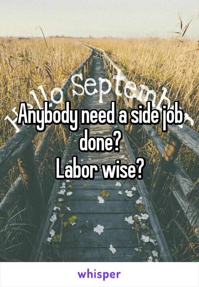 Anybody need a side job done? Labor wise?