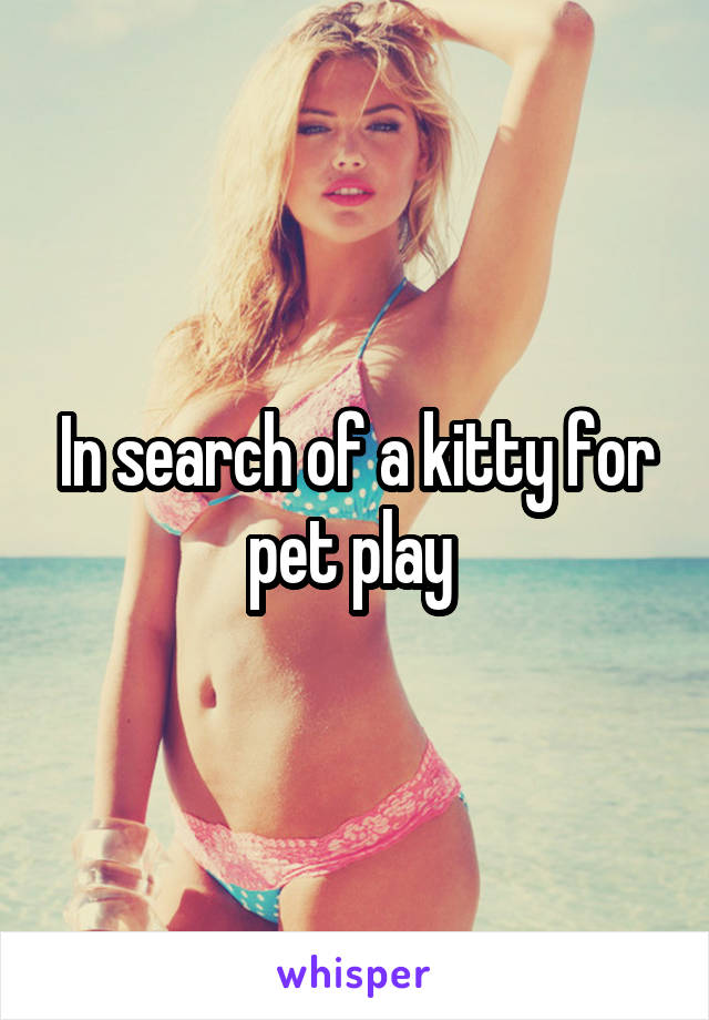 In search of a kitty for pet play