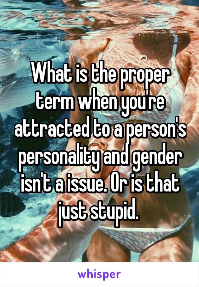 What is the proper term when you're attracted to a person's personality and gender isn't a issue. Or is that just stupid.