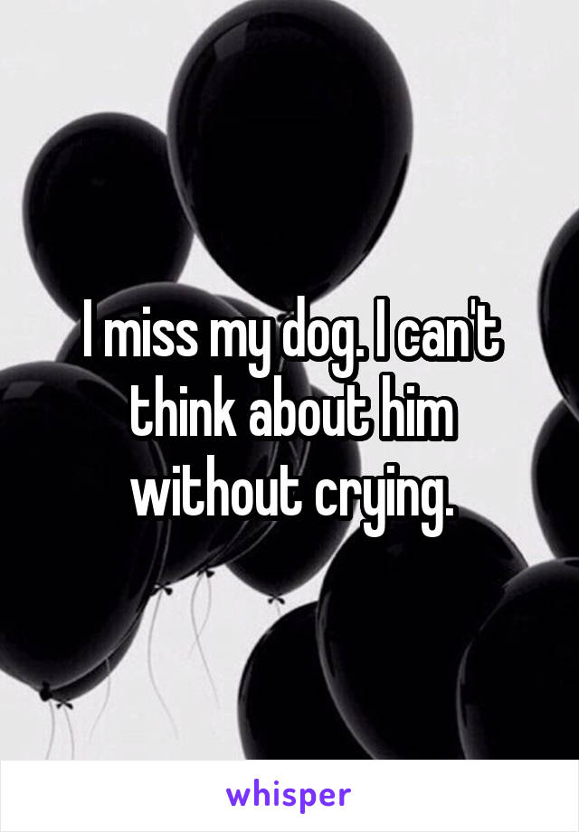 I miss my dog. I can't think about him without crying.