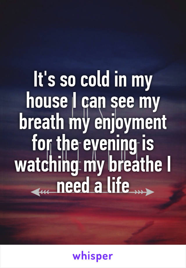 It's so cold in my house I can see my breath my enjoyment for the evening is watching my breathe I need a life