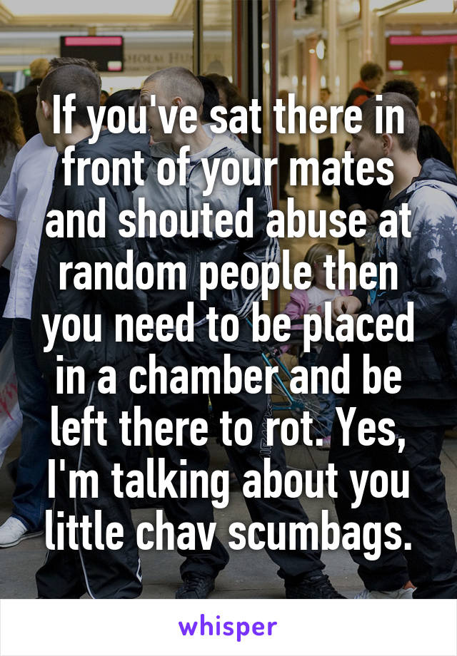 If you've sat there in front of your mates and shouted abuse at random people then you need to be placed in a chamber and be left there to rot. Yes, I'm talking about you little chav scumbags.
