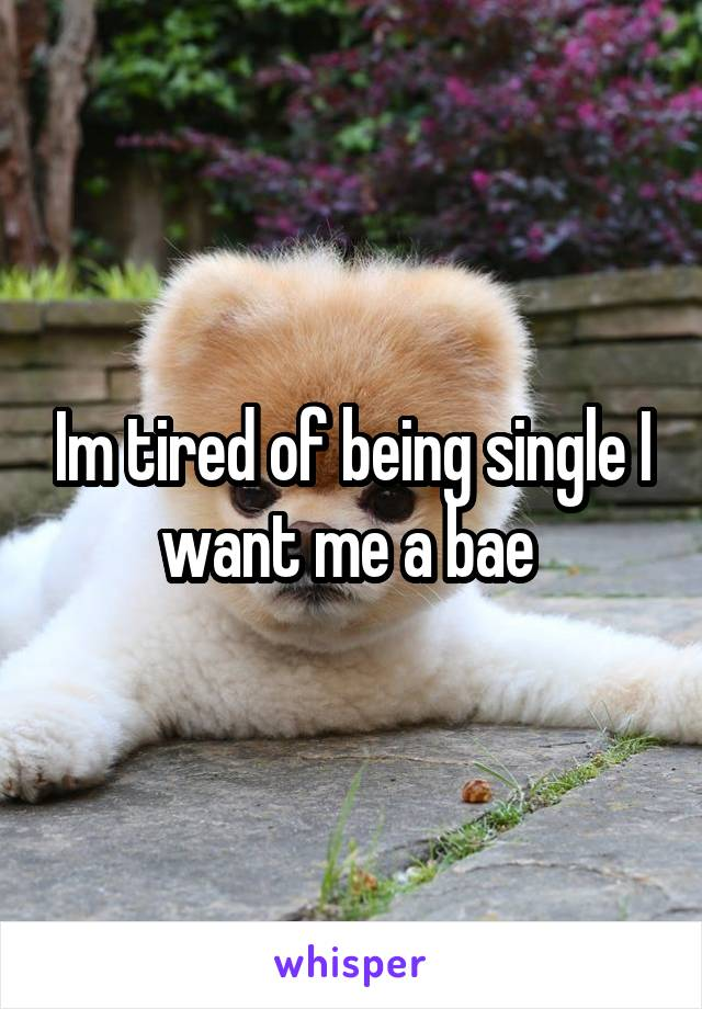 Im tired of being single I want me a bae