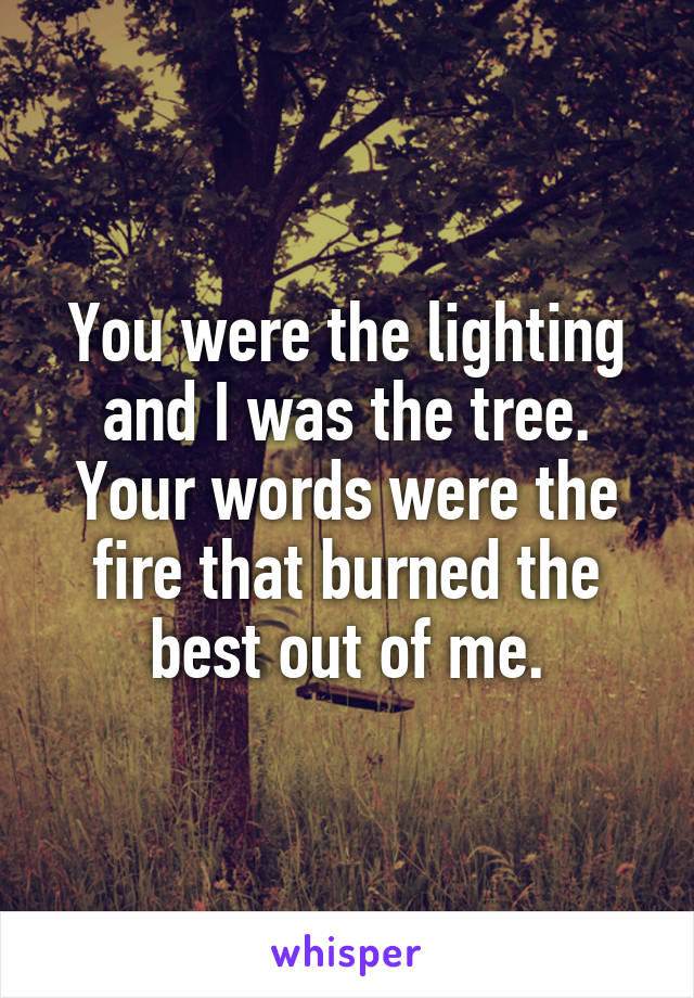 You were the lighting and I was the tree. Your words were the fire that burned the best out of me.