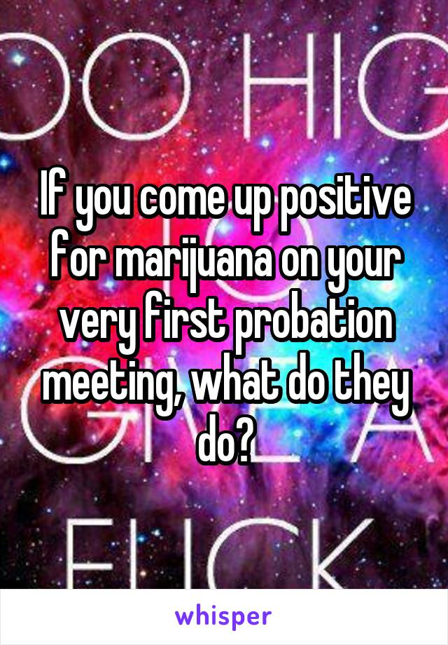 If you come up positive for marijuana on your very first probation meeting, what do they do?