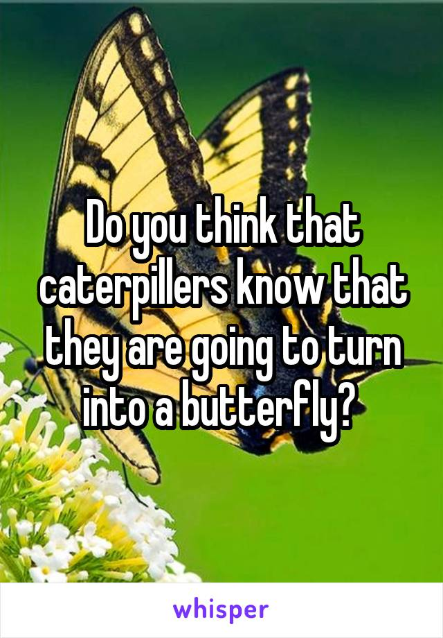 Do you think that caterpillers know that they are going to turn into a butterfly?
