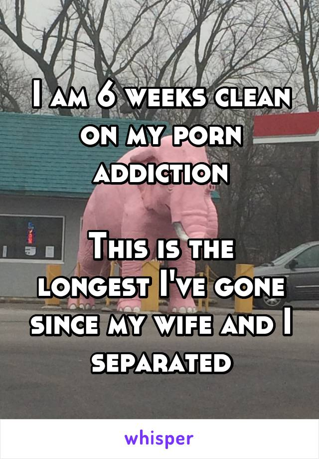 I am 6 weeks clean on my porn addiction  This is the longest I've gone since my wife and I separated