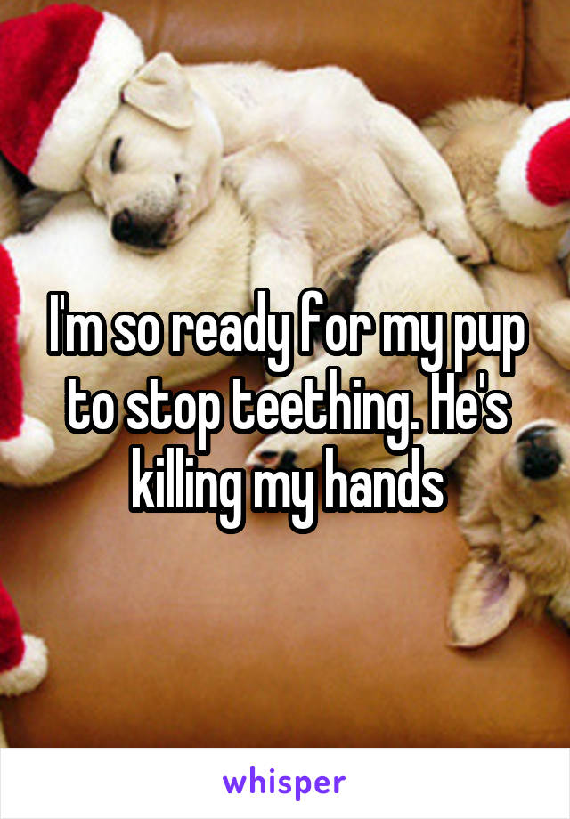 I'm so ready for my pup to stop teething. He's killing my hands