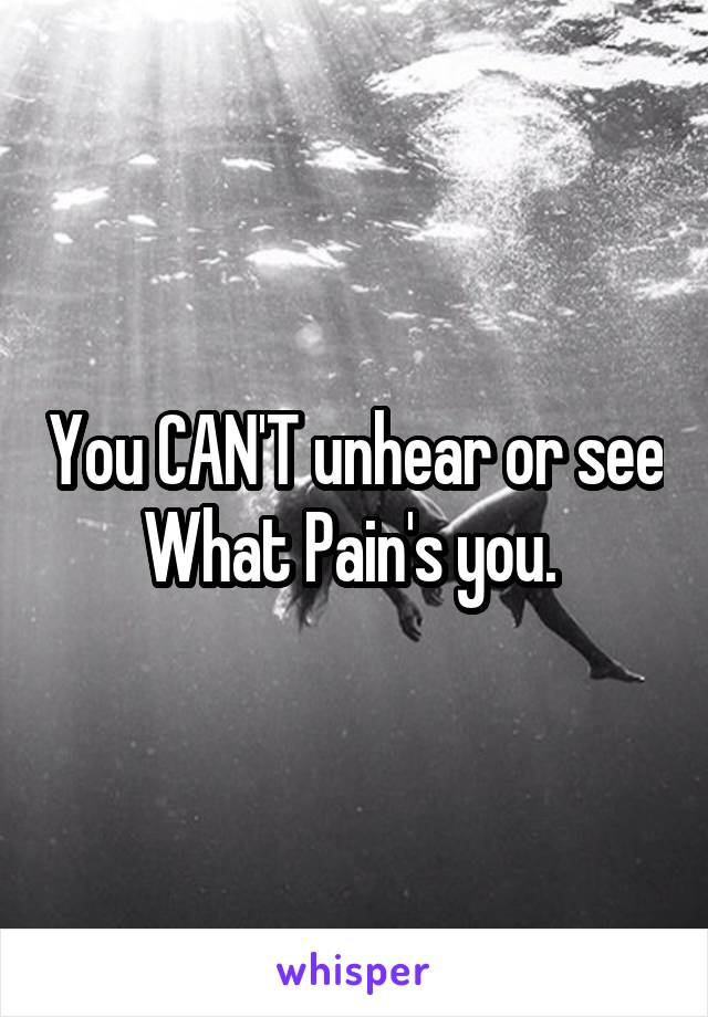 You CAN'T unhear or see What Pain's you.