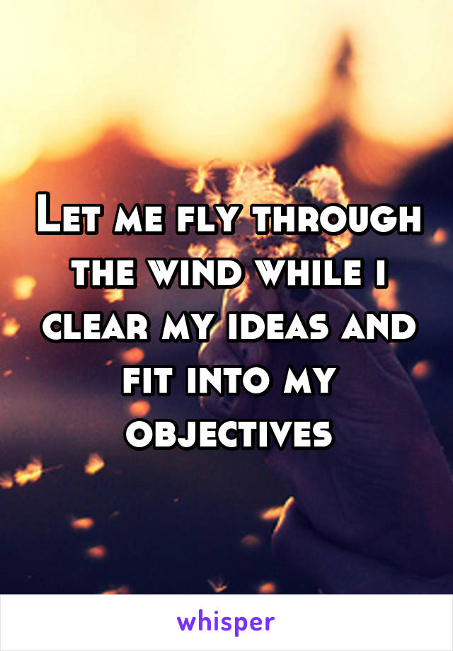 Let me fly through the wind while i clear my ideas and fit into my objectives