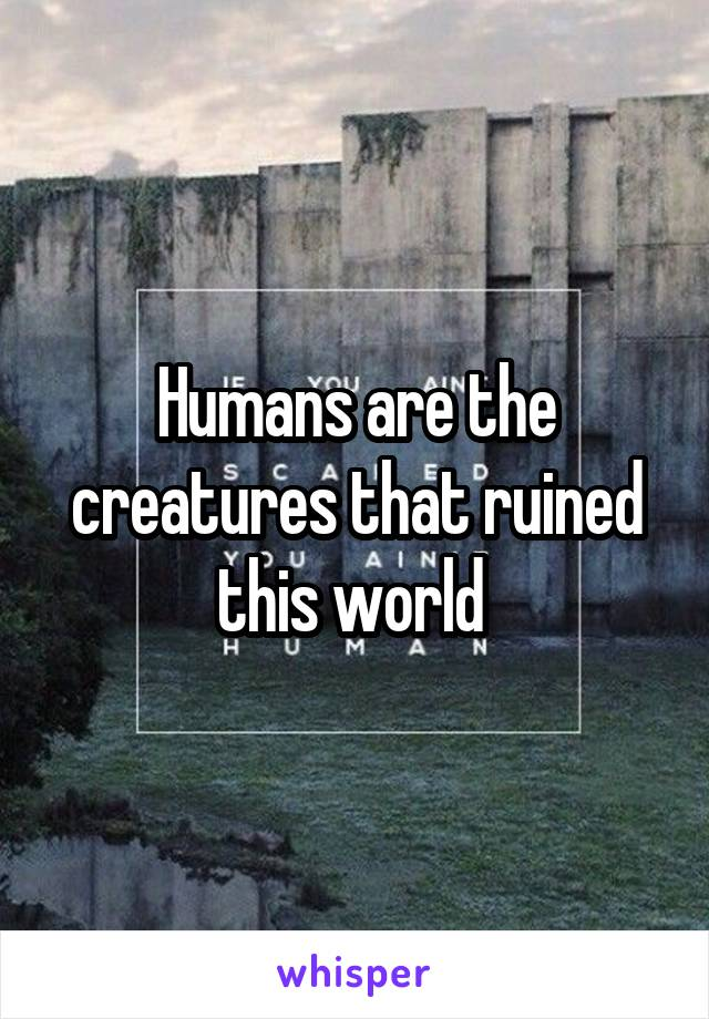 Humans are the creatures that ruined this world