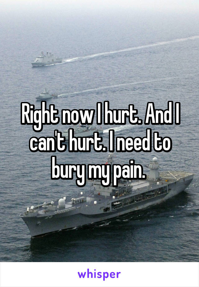 Right now I hurt. And I can't hurt. I need to bury my pain.