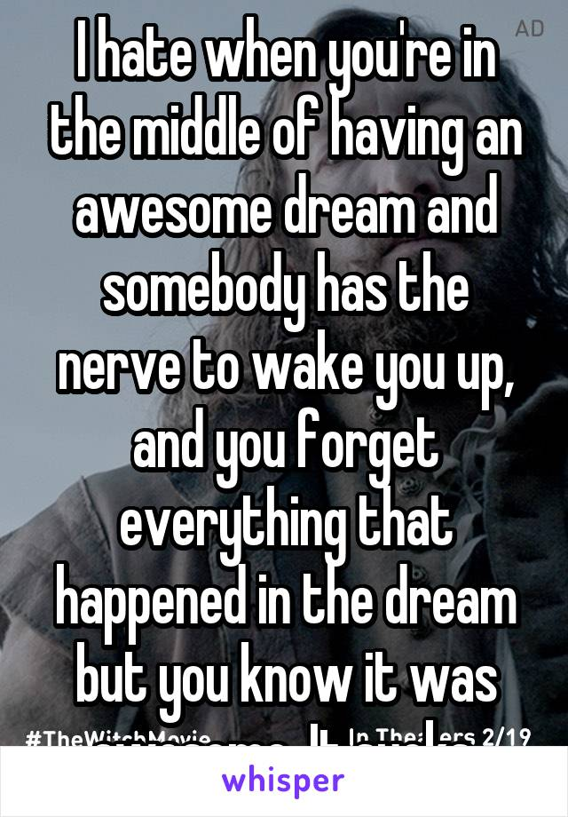 I hate when you're in the middle of having an awesome dream and somebody has the nerve to wake you up, and you forget everything that happened in the dream but you know it was awesome. It sucks.