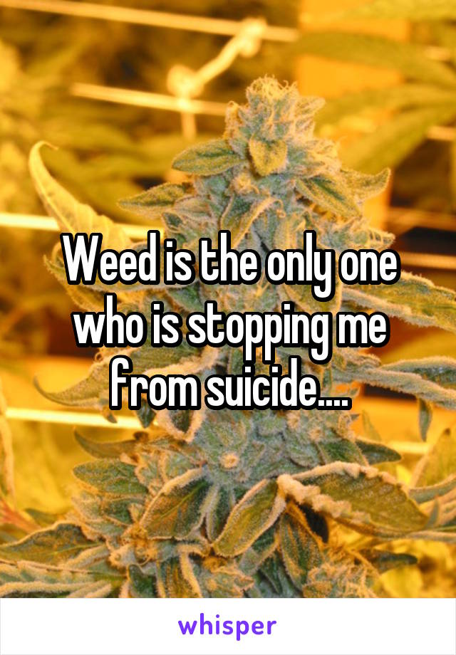 Weed is the only one who is stopping me from suicide....