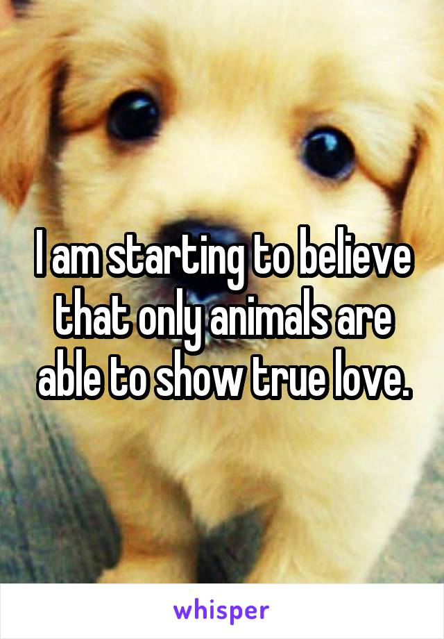 I am starting to believe that only animals are able to show true love.