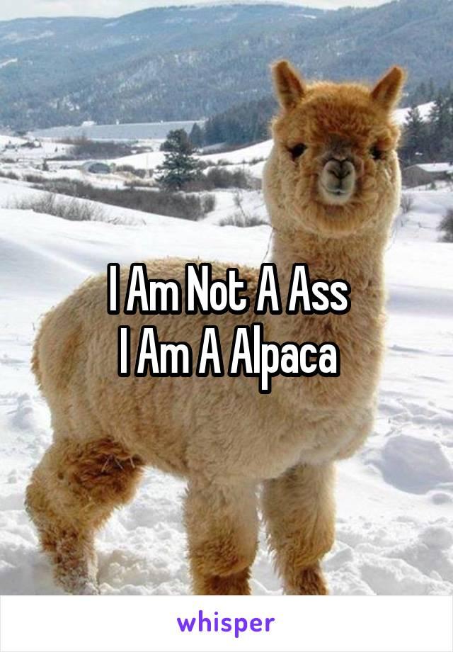 I Am Not A Ass I Am A Alpaca
