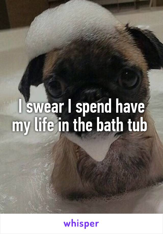 I swear I spend have my life in the bath tub