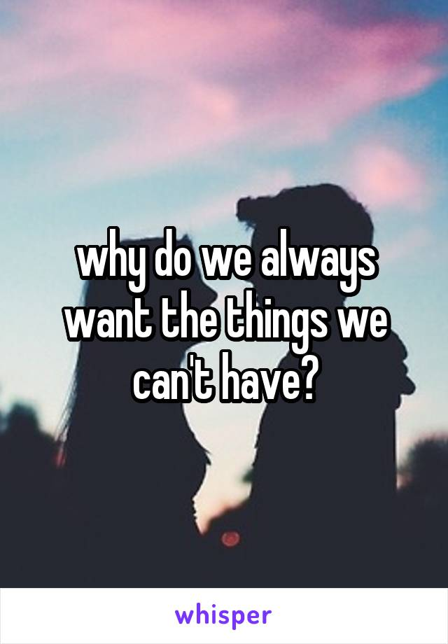 why do we always want the things we can't have?