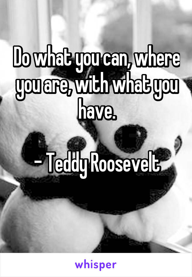 Do what you can, where you are, with what you have.  - Teddy Roosevelt