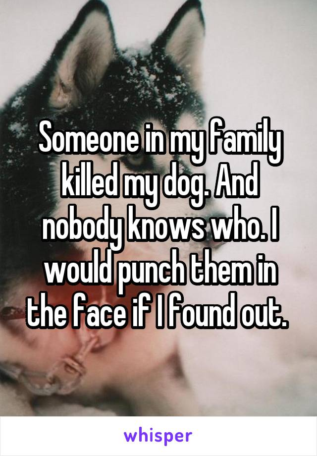 Someone in my family killed my dog. And nobody knows who. I would punch them in the face if I found out.