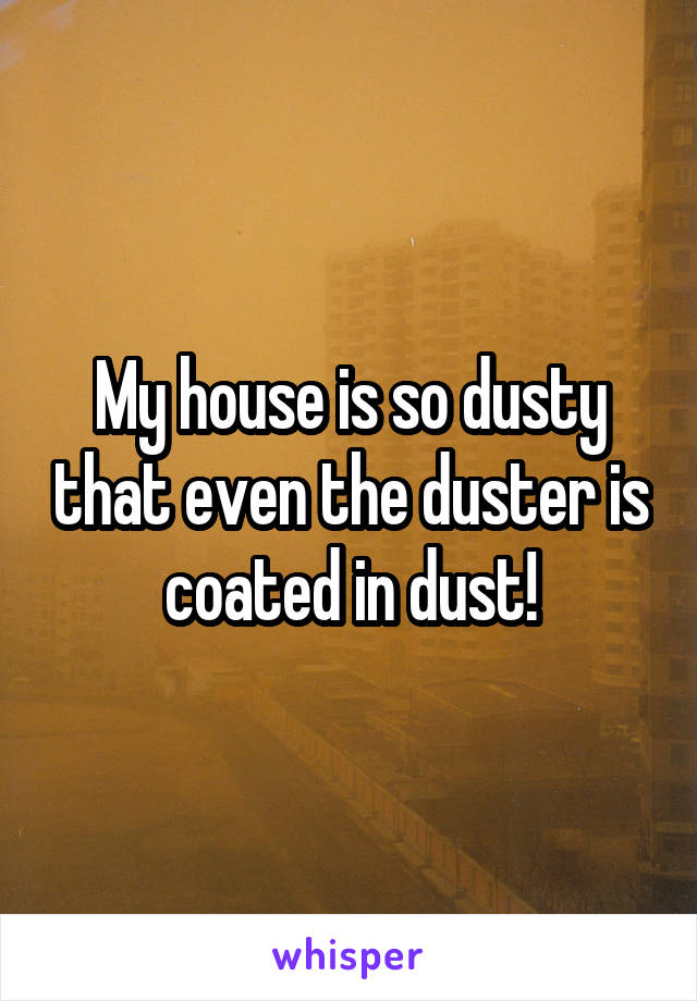 My House Is So Dusty That Even The Duster Is Coated In Dust!
