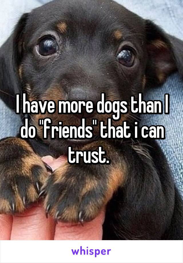 """I have more dogs than I do """"friends"""" that i can trust."""