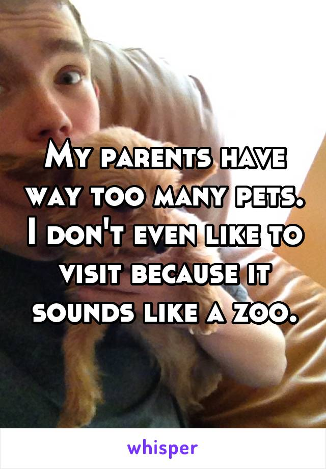 My parents have way too many pets. I don't even like to visit because it sounds like a zoo.