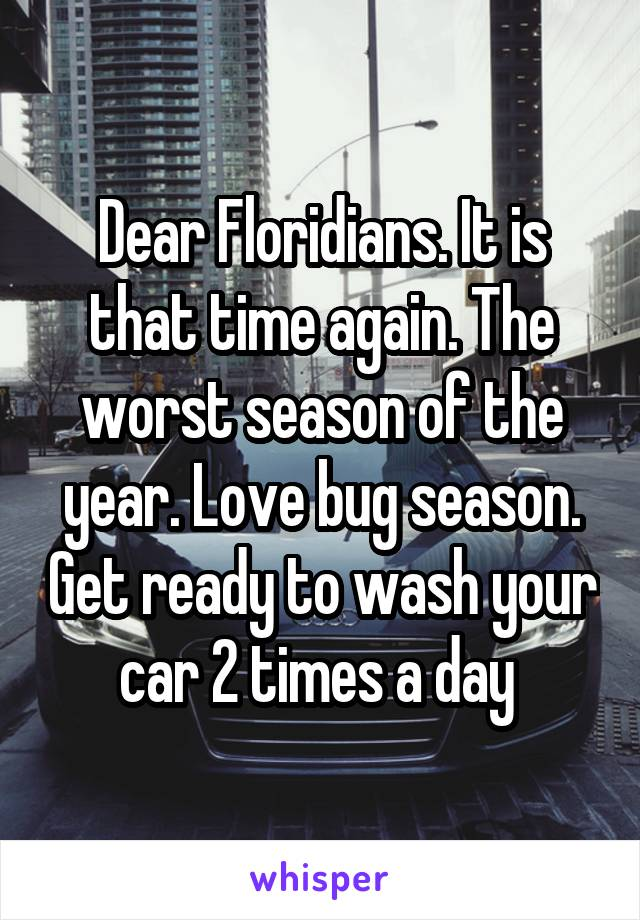 Dear Floridians. It is that time again. The worst season of the year. Love bug season. Get ready to wash your car 2 times a day