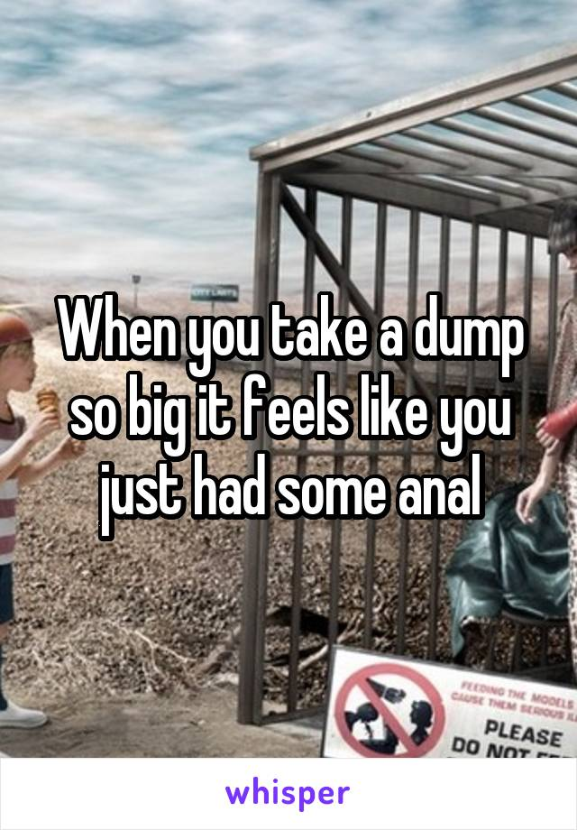 When you take a dump so big it feels like you just had some anal