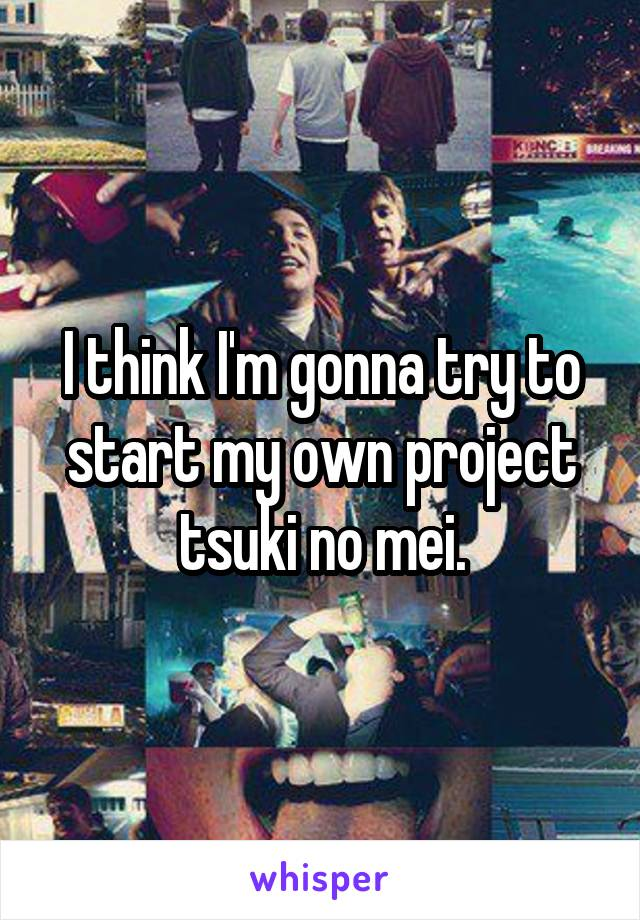 I think I'm gonna try to start my own project tsuki no mei.