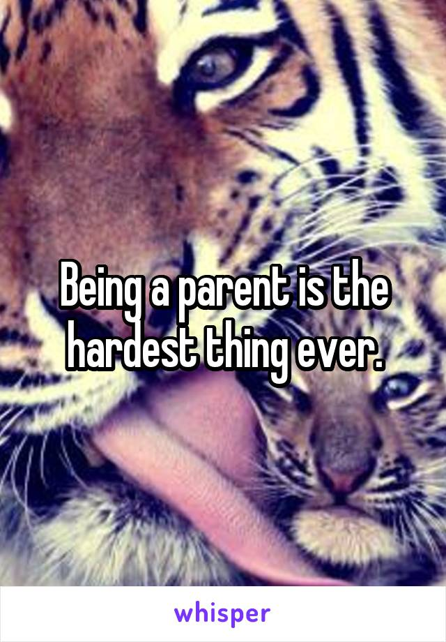Being a parent is the hardest thing ever.