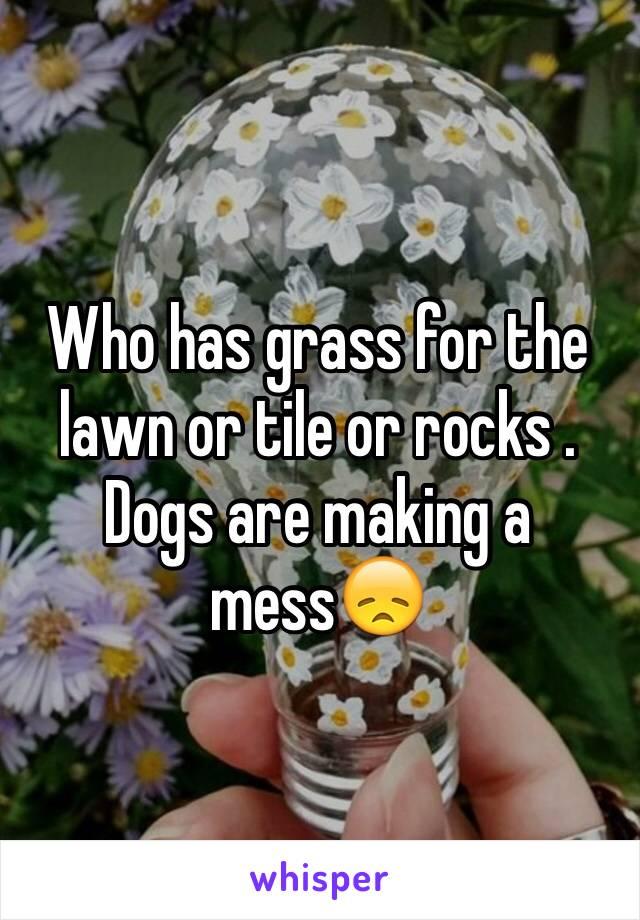 Who has grass for the lawn or tile or rocks . Dogs are making a mess😞