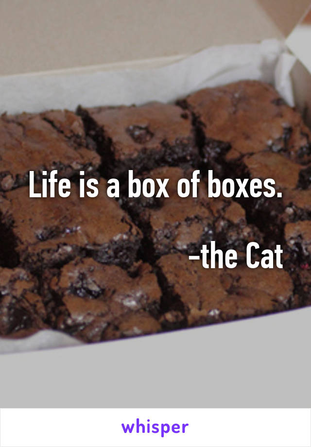 Life is a box of boxes.                                   -the Cat