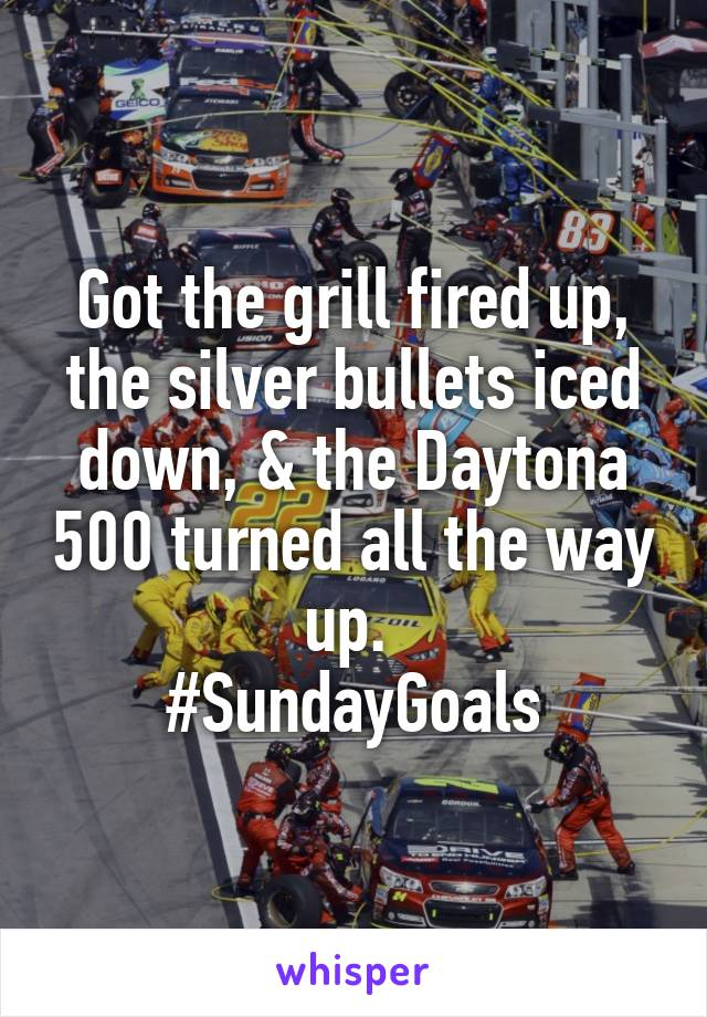 Got the grill fired up, the silver bullets iced down, & the Daytona 500 turned all the way up.  #SundayGoals