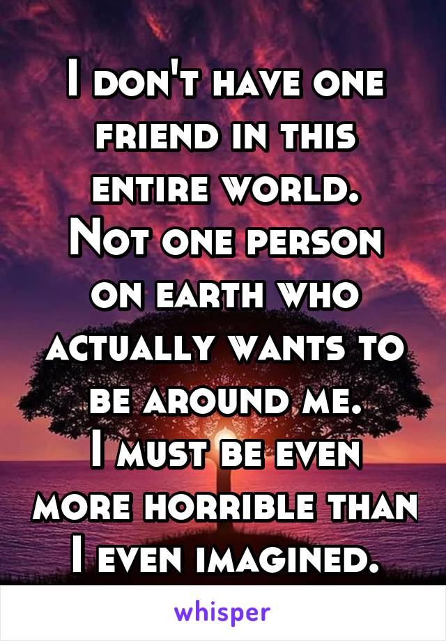 I don't have one friend in this entire world. Not one person on earth who actually wants to be around me. I must be even more horrible than I even imagined.
