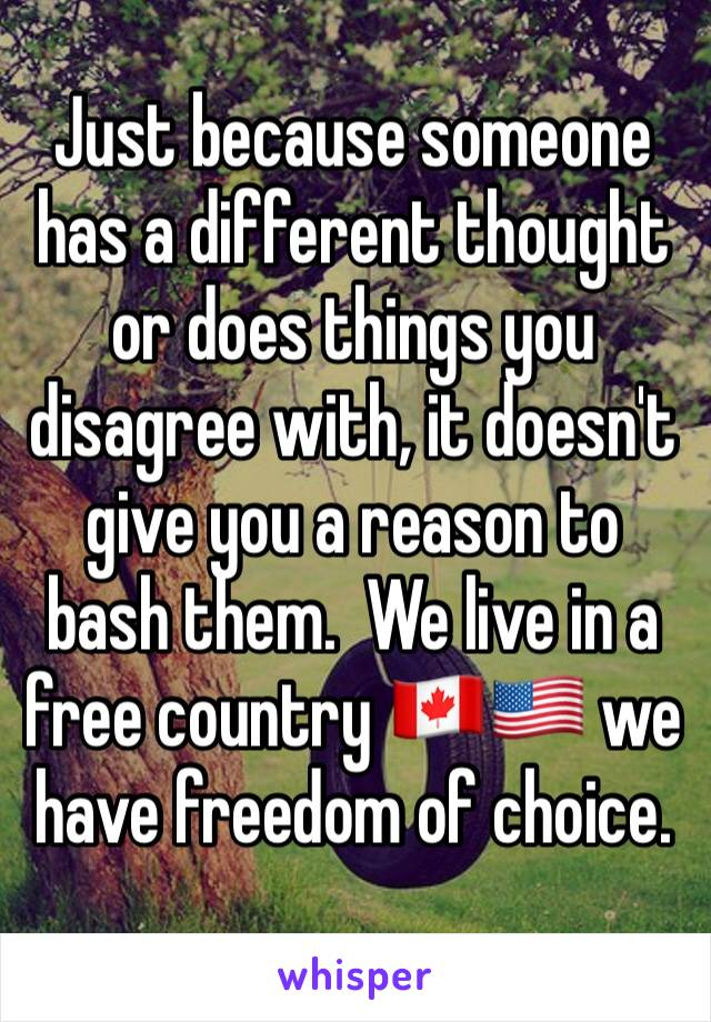 Just because someone has a different thought or does things you disagree with, it doesn't give you a reason to bash them.  We live in a free country 🇨🇦🇺🇸 we have freedom of choice.