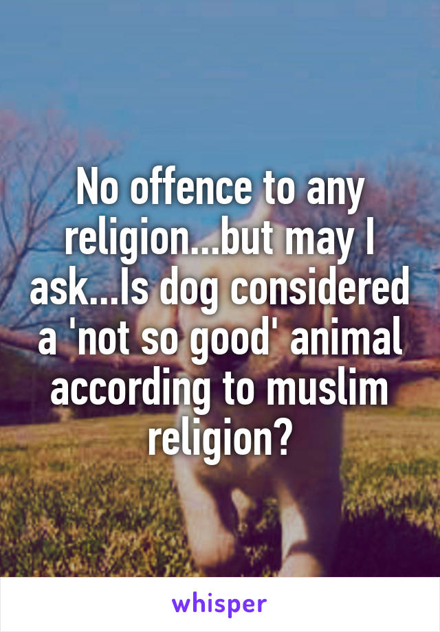 No offence to any religion...but may I ask...Is dog considered a 'not so good' animal according to muslim religion?