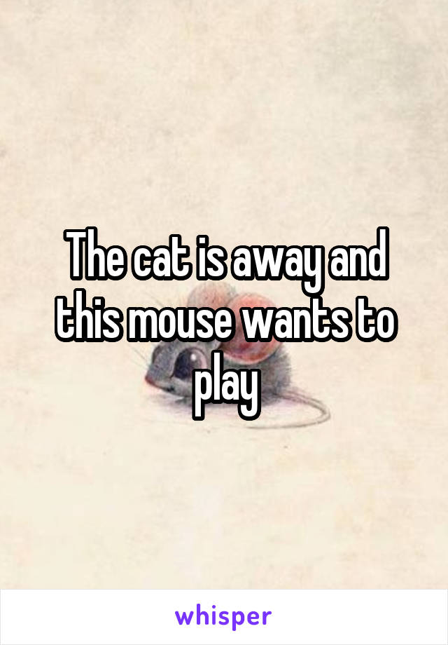 The cat is away and this mouse wants to play