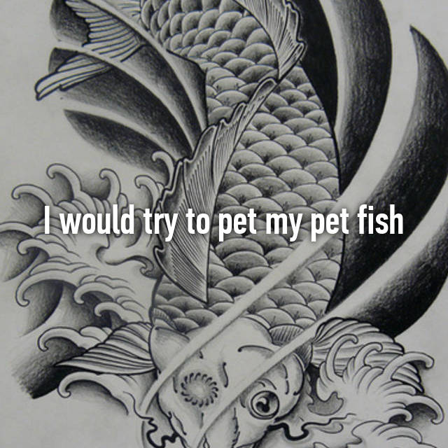 I would try to pet my pet fish