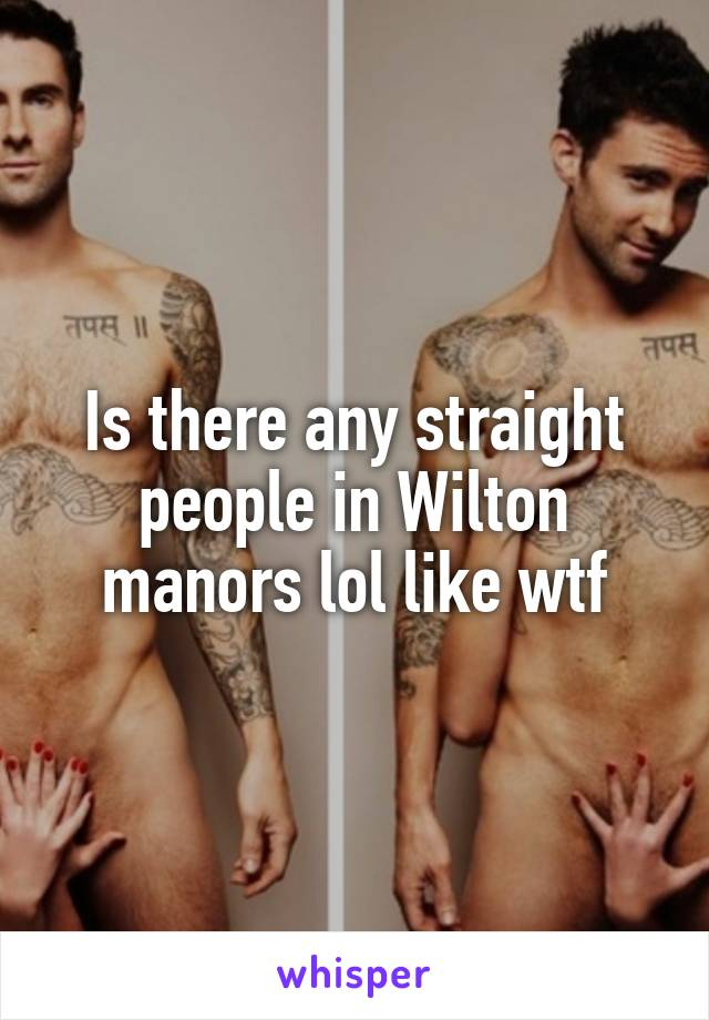 Is there any straight people in Wilton manors lol like wtf
