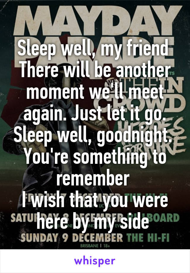Sleep well, my friend  There will be another moment we'll meet again. Just let it go. Sleep well, goodnight.  You're something to remember  I wish that you were here by my side
