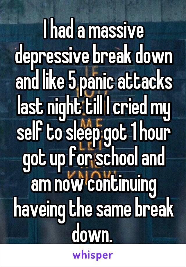 I had a massive depressive break down and like 5 panic attacks last night till I cried my self to sleep got 1 hour got up for school and am now continuing haveing the same break down.