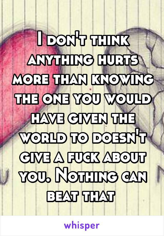 I don't think anything hurts more than knowing the one you would have given the world to doesn't give a fuck about you. Nothing can beat that