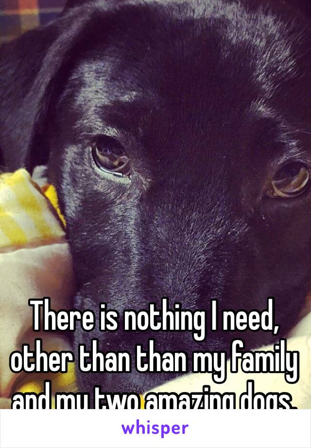 There is nothing I need, other than than my family and my two amazing dogs.