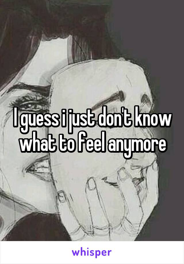 I guess i just don't know what to feel anymore