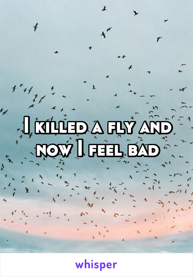 I killed a fly and now I feel bad