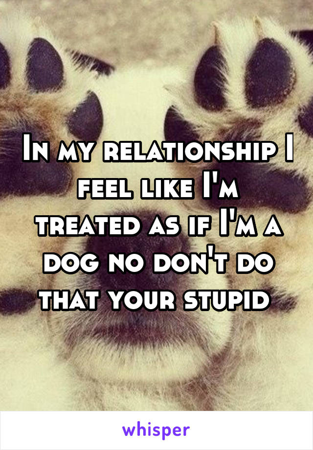 In my relationship I feel like I'm treated as if I'm a dog no don't do that your stupid