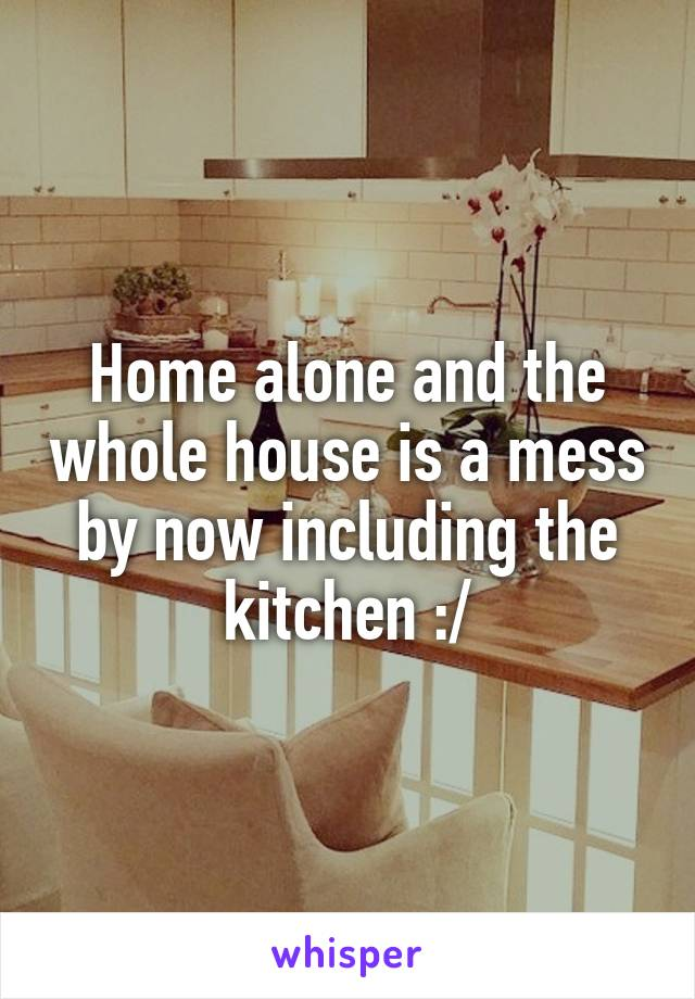 Home alone and the whole house is a mess by now including the kitchen :/